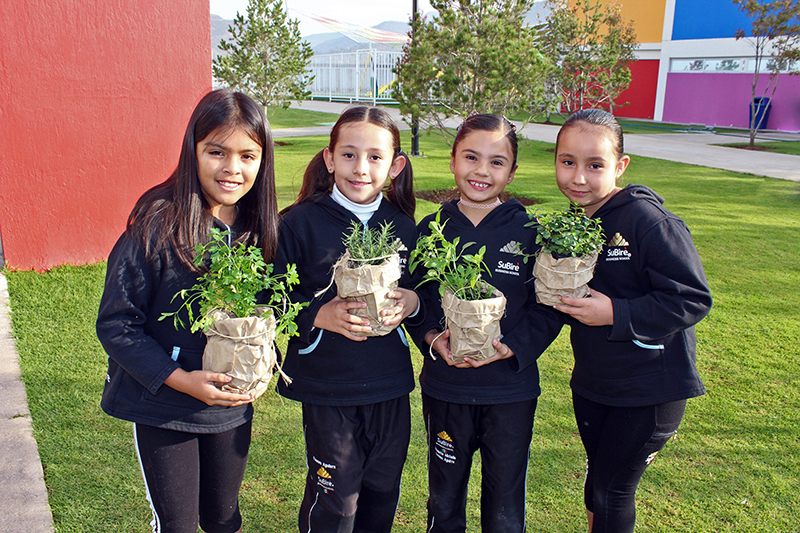 educacion-sustentable